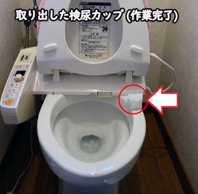 取り出した検尿カップ(作業終了)